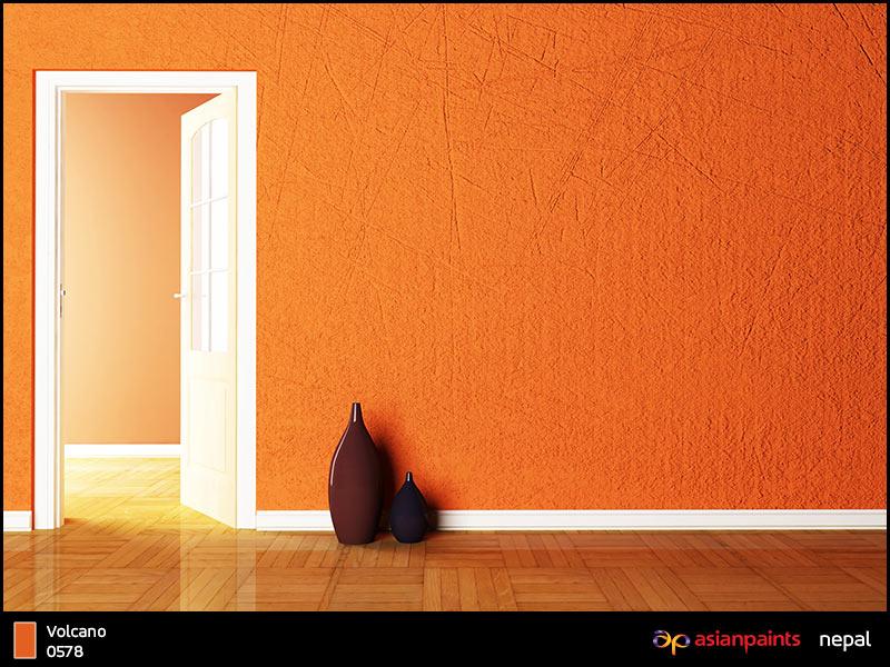 Trendy asian paints interiors beautiful interior paints for Interior wall designs asian paints